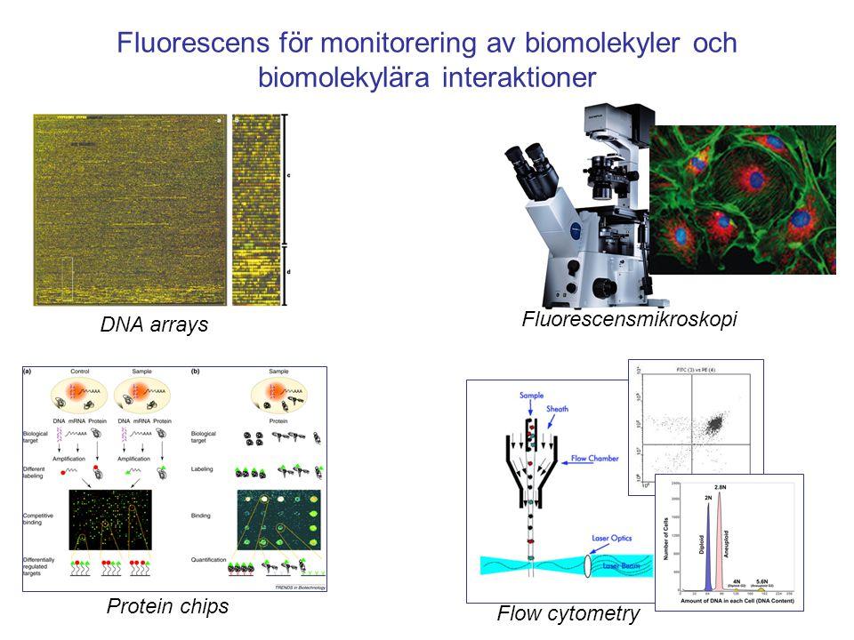 Fluorescensbaserad enmolekyl-spektroskopi