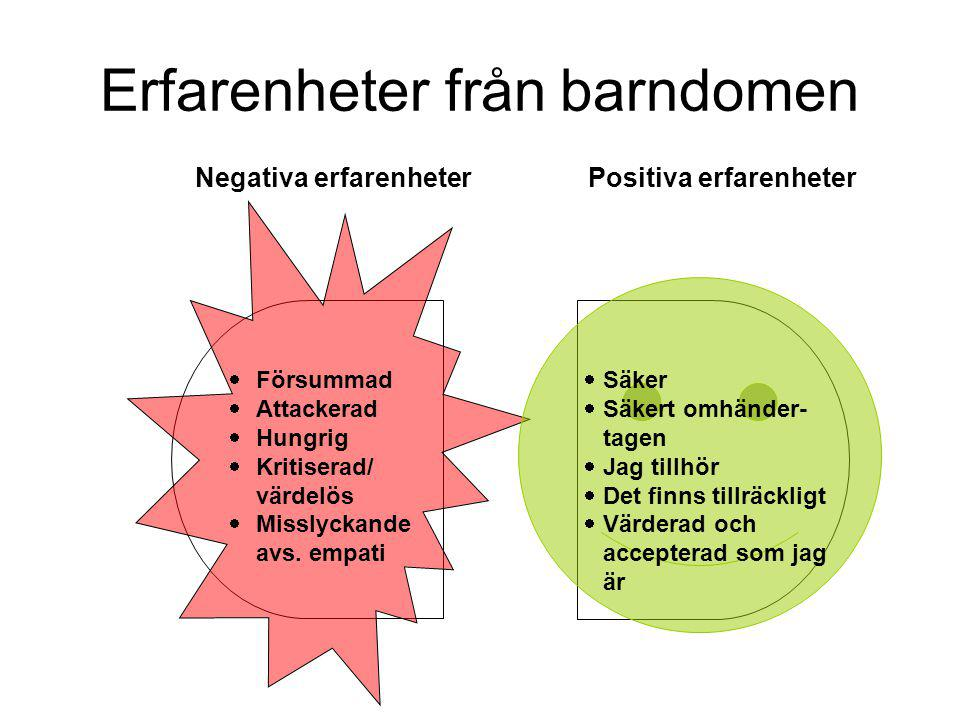 Erfarenheter från barndomen Positiva erfarenheterNegativa erfarenheter  Försummad  Attackerad  Hungrig  Kritiserad/ värdelös  Misslyckande avs.