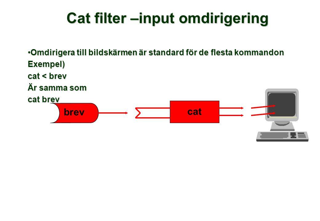 Cat filter –input omdirigering Omdirigera till bildskärmen är standard för de flesta kommandonOmdirigera till bildskärmen är standard för de flesta kommandonExempel) cat < brev Är samma som cat brev brev cat