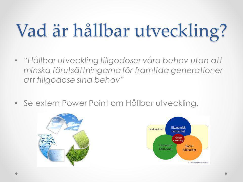Hållbar turismutveckling I Sverige ska den statliga myndigheten Nutek samordna svensk turism.