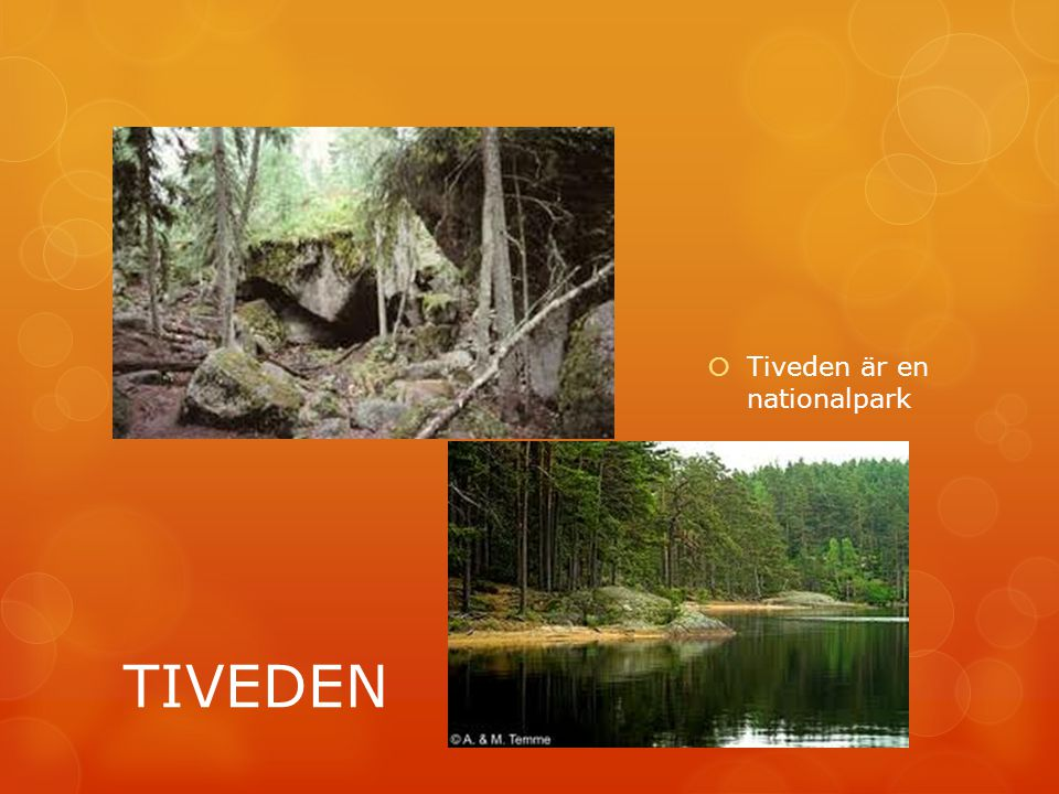 TIVEDEN  Tiveden är en nationalpark