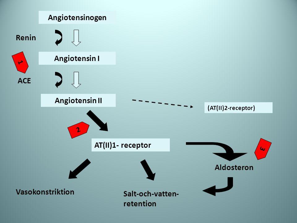 Angiotensinogen Angiotensin I Angiotensin II AT(II)1- receptor (AT(II)2-receptor) Renin ACE Salt-och-vatten- retention Aldosteron Vasokonstriktion 2 1
