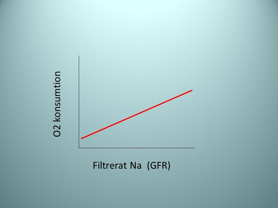 Filtrerat Na (GFR) O2 konsumtion
