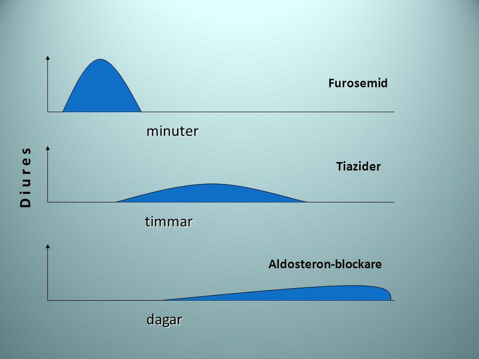 Furosemid Tiazider Aldosteron-blockare D i u r e s minuter timmar dagar
