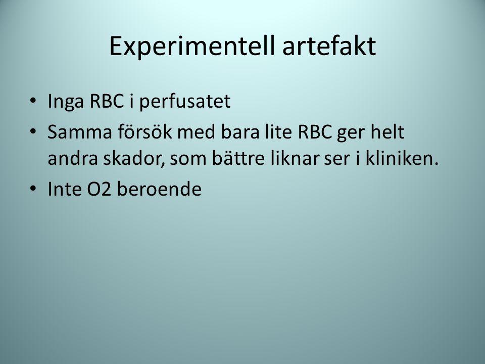 Experimentell artefakt Inga RBC i perfusatet Samma försök med bara lite RBC ger helt andra skador, som bättre liknar ser i kliniken. Inte O2 beroende