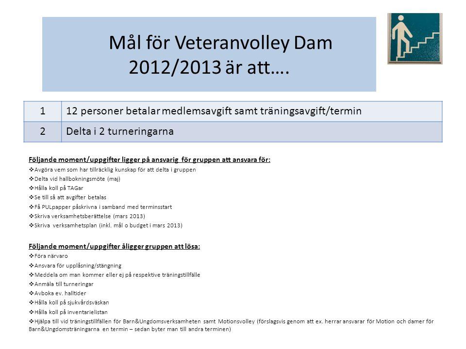 Verksamhetsplan 2012/2013 för Veteranvolley - Herr Målgrupp för vår verksamhet är: För killar som kan alla spelmoment, slag, teknik och placering på plan.