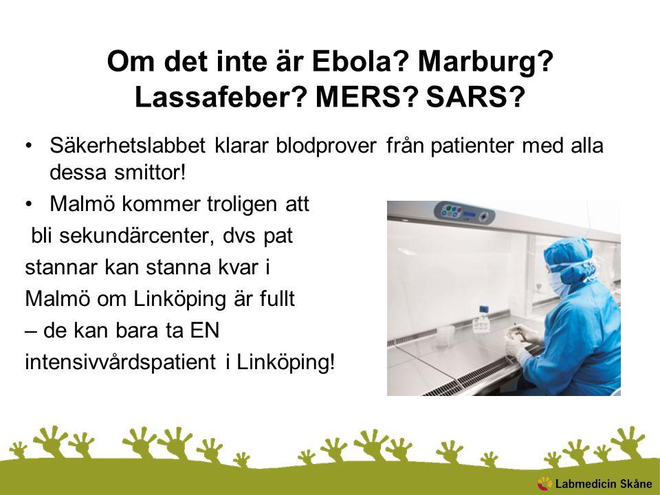 Om det inte är Ebola? Marburg? Lassafeber? MERS? SARS? Säkerhetslabbet klarar blodprover från patienter med alla dessa smittor! Malmö kommer troligen