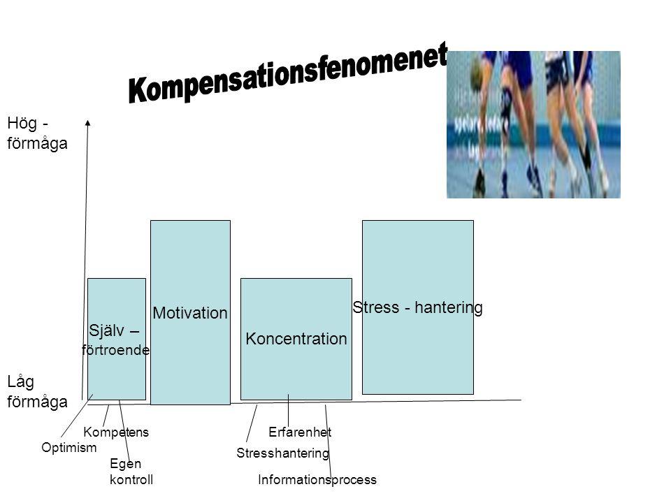 Hög - förmåga Låg förmåga Själv – förtroende Motivation Koncentration Stress - hantering Optimism Kompetens Egen kontroll Stresshantering Erfarenhet I