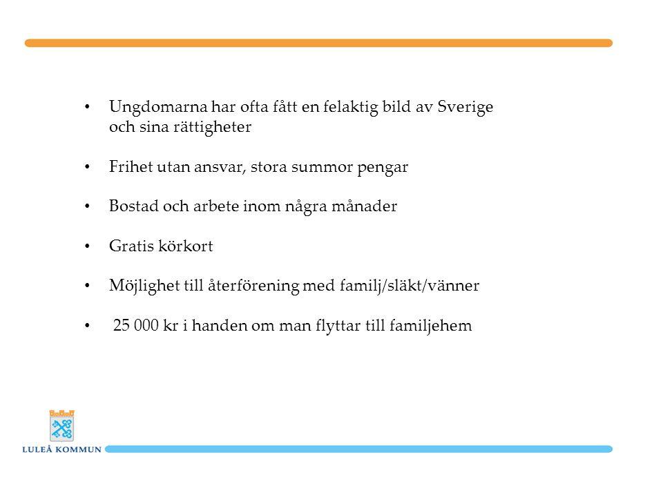 Ungdomarna har ofta fått en felaktig bild av Sverige och sina rättigheter Frihet utan ansvar, stora summor pengar Bostad och arbete inom några månader Gratis körkort Möjlighet till återförening med familj/släkt/vänner 25 000 kr i handen om man flyttar till familjehem