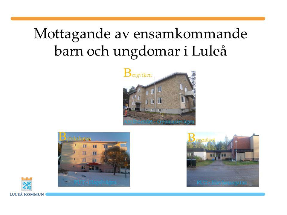 Mottagande av ensamkommande barn och ungdomar i Luleå PUT - Elevhemsgatan PUT - Hagelvägen Asylboendet – Gymnasievägen B jörkskatan B ergnäset B ergviken