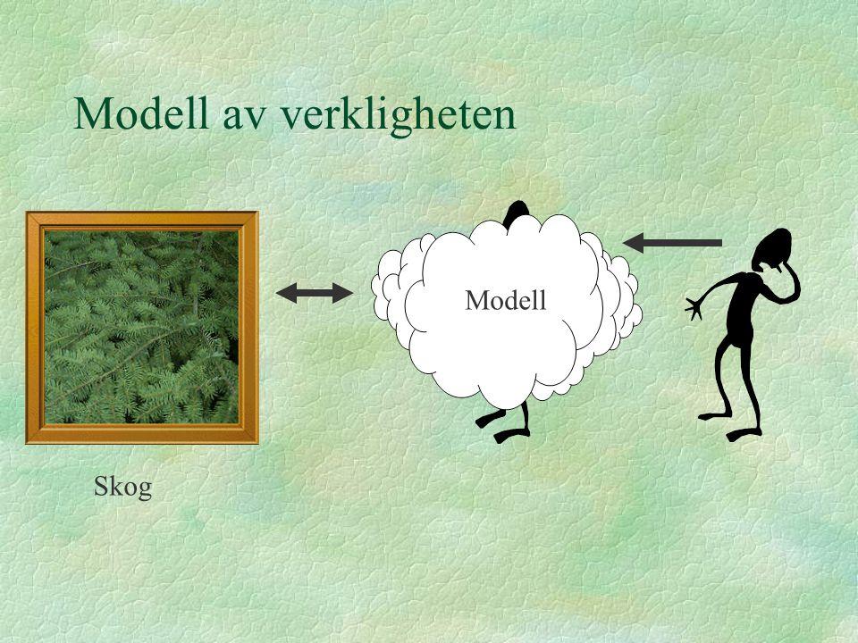 Modell av verkligheten Modell Skog