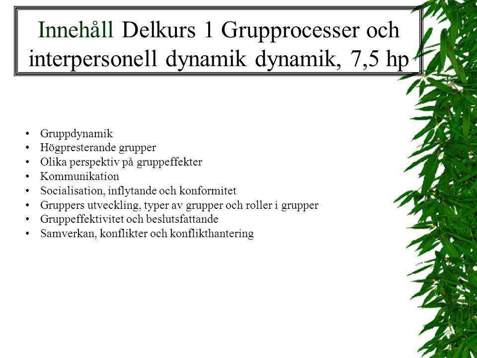Innehåll Delkurs 1 Grupprocesser och interpersonell dynamik dynamik, 7,5 hp Gruppdynamik Högpresterande grupper Olika perspektiv på gruppeffekter Komm