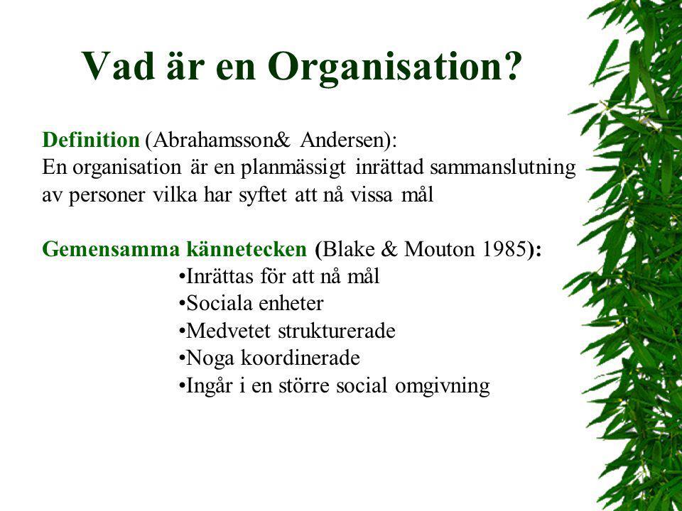 Vad är en Organisation? Definition (Abrahamsson& Andersen): En organisation är en planmässigt inrättad sammanslutning av personer vilka har syftet att
