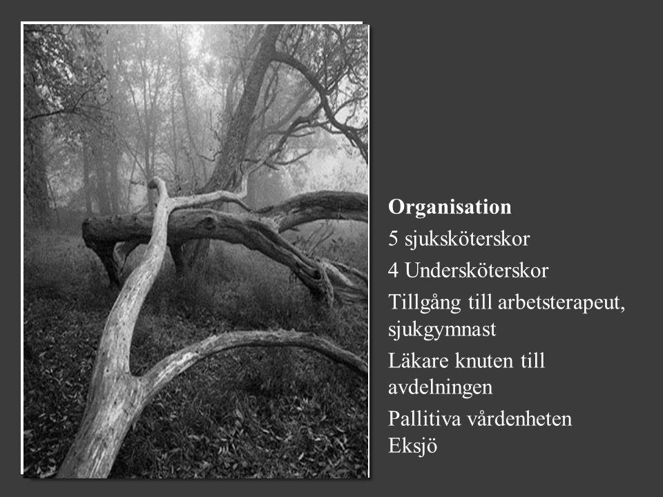 Organisation 5 sjuksköterskor 4 Undersköterskor Tillgång till arbetsterapeut, sjukgymnast Läkare knuten till avdelningen Pallitiva vårdenheten Eksjö