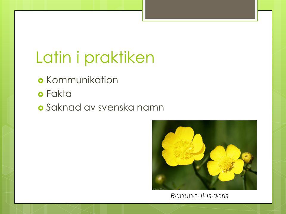 Ingela Dahllöf, prefekt för institutionen för biologi och miljövetenskap, Göteborgs Universitet  Inte i lingvistisk bemärkelse  Systematiken och taxonomin är uppbyggd kring latinska namn  Vet vilken växt man menar Tussilago farfara