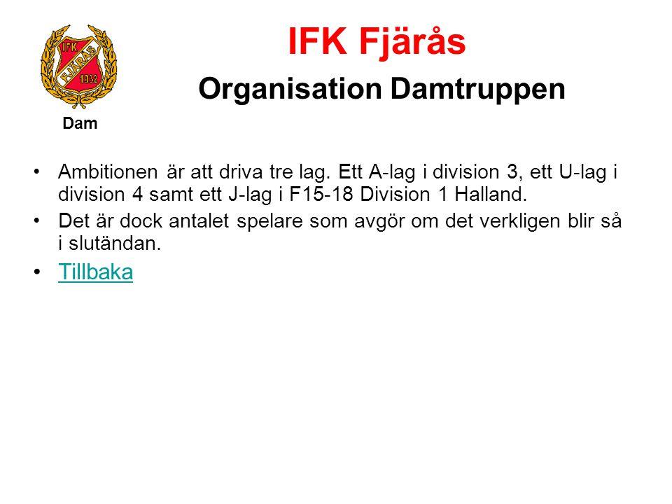 IFK Fjärås Organisation Damtruppen Dam Ambitionen är att driva tre lag. Ett A-lag i division 3, ett U-lag i division 4 samt ett J-lag i F15-18 Divisio