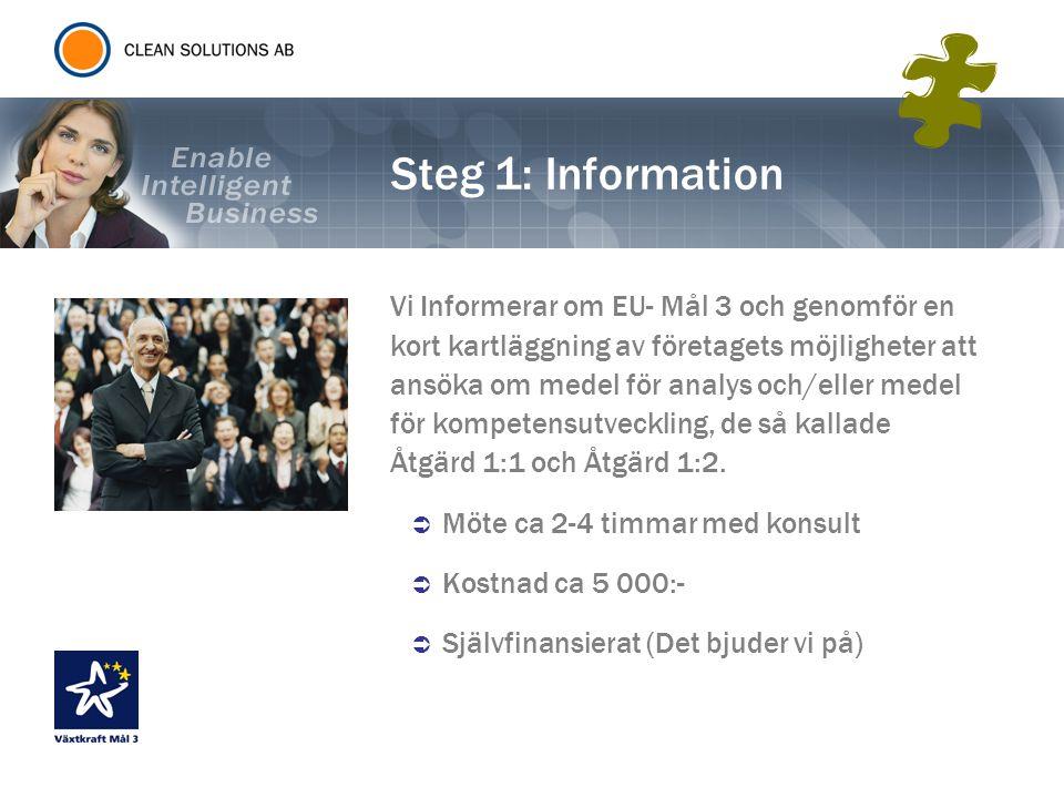 Steg 1: Information Vi Informerar om EU- Mål 3 och genomför en kort kartläggning av företagets möjligheter att ansöka om medel för analys och/eller me