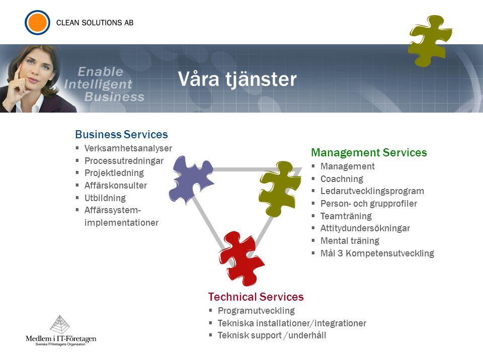 Våra tjänster Business Services  Verksamhetsanalyser  Processutredningar  Projektledning  Affärskonsulter  Utbildning  Affärssystem- implementat