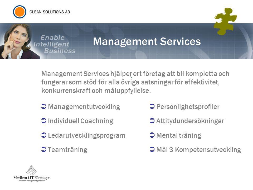 Management Services  Managementutveckling  Individuell Coachning  Ledarutvecklingsprogram  Teamträning.  Personlighetsprofiler  Attitydundersökn