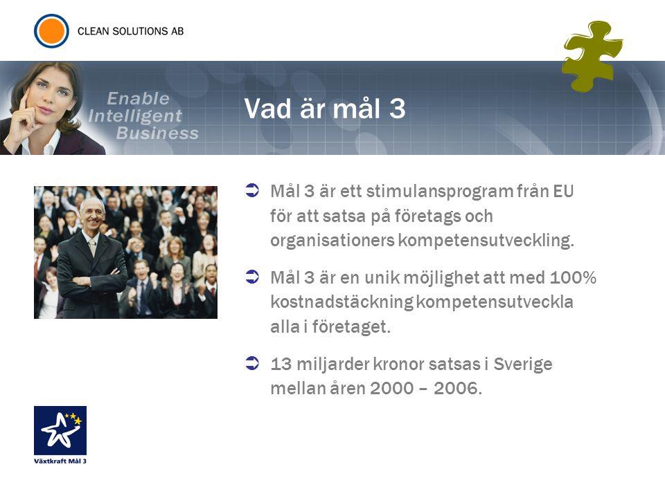 Vad är mål 3  Mål 3 är ett stimulansprogram från EU för att satsa på företags och organisationers kompetensutveckling.  Mål 3 är en unik möjlighet a