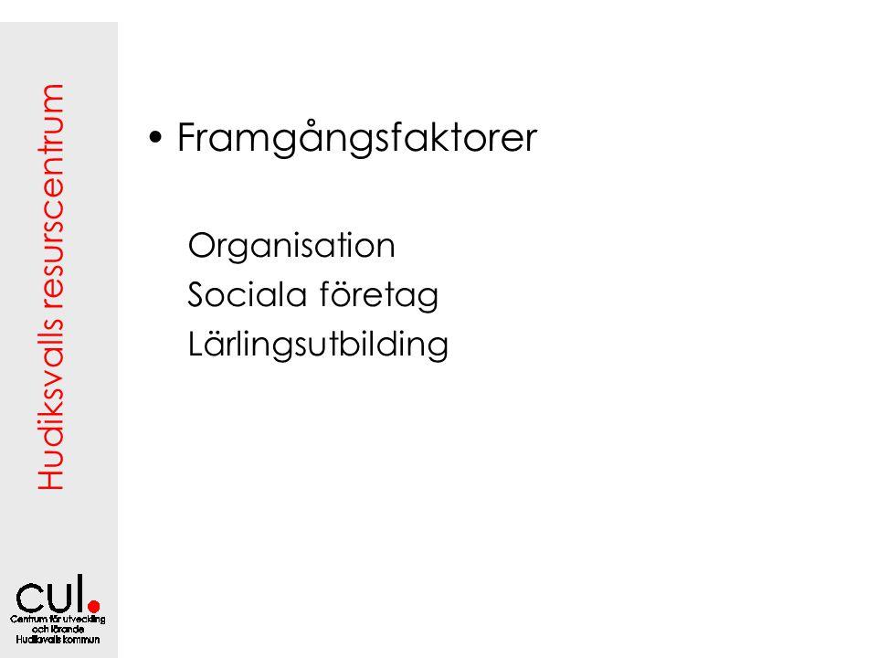 Framgångsfaktorer Organisation Sociala företag Lärlingsutbilding