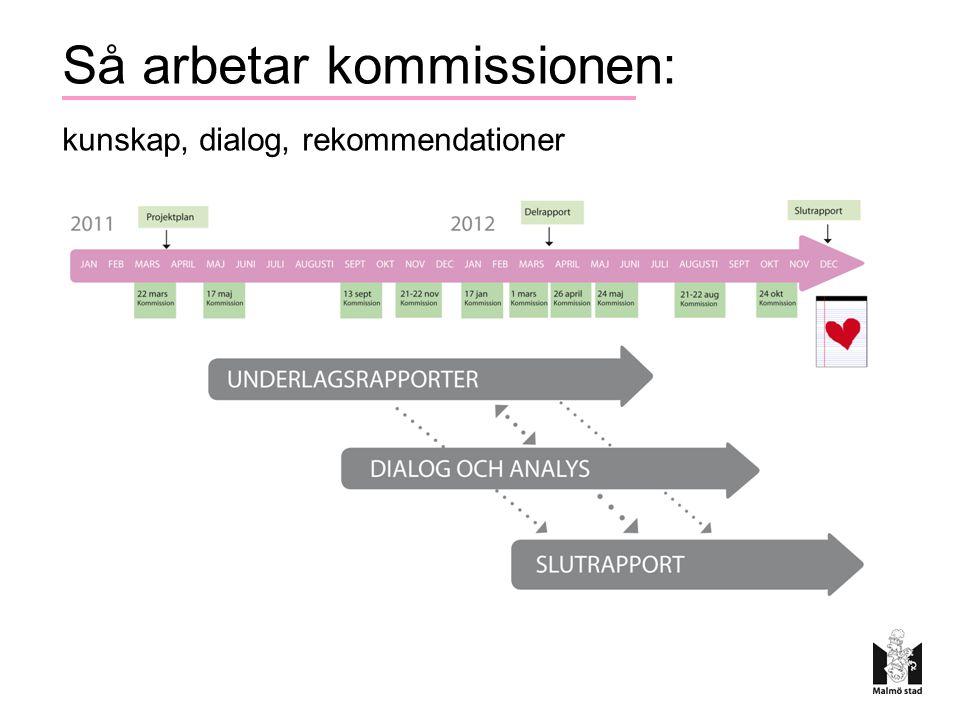Så arbetar kommissionen: kunskap, dialog, rekommendationer
