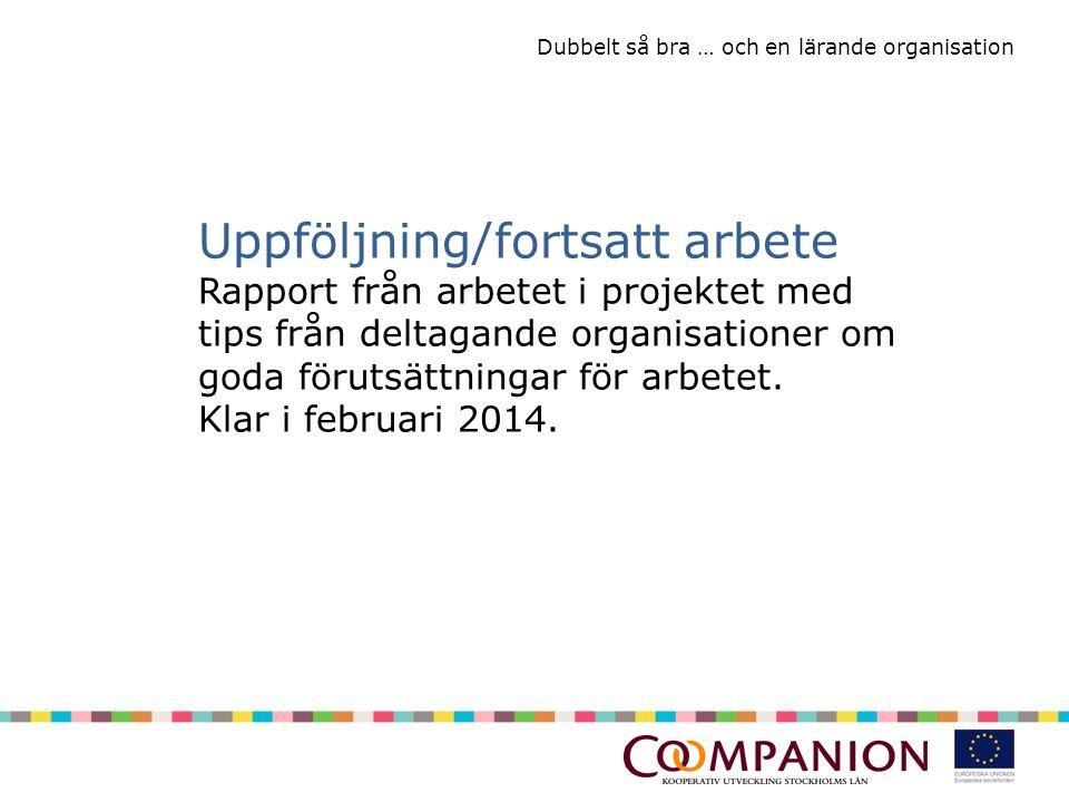 Dubbelt så bra … och en lärande organisation Uppföljning/fortsatt arbete Rapport från arbetet i projektet med tips från deltagande organisationer om goda förutsättningar för arbetet.