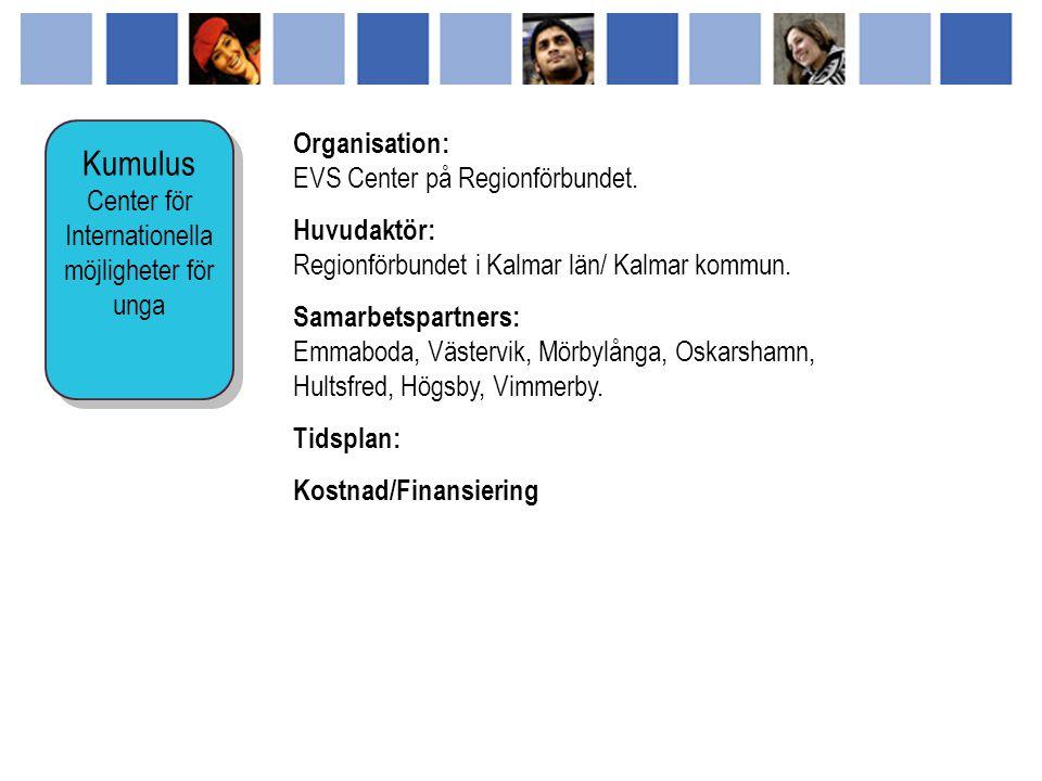 Organisation: EVS Center på Regionförbundet. Huvudaktör: Regionförbundet i Kalmar län/ Kalmar kommun. Samarbetspartners: Emmaboda, Västervik, Mörbylån