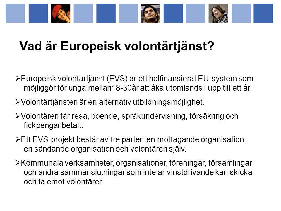Vad är Europeisk volontärtjänst.