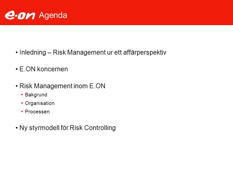 Visionen för Styrmodellen för Risk Controlling Visionen med styrmodellen för Risk Controlling är att uppnå gemensam kontroll, styrning och rapportering av risker inom E.ON Sverige  Kunskap och transparens angående koncernens risker och riskåtgärder – säkerställa att risker hanteras och prioriteras på ett korrekt sätt – Komfort nivå  Säkerställa risk kapacitetsnivån (aptiten)  Säkerställa våra intressenters krav  Uppnå affärspartnerskap med affärsområdena och bolagen, kontroll, service och koordinering  Förbättra och kvalitetssäkra RM och risk rapporteringen