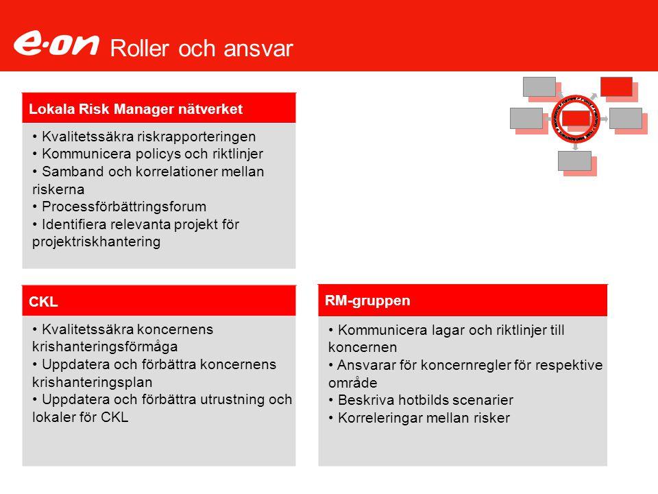 Roller och ansvar Lokala Risk Manager nätverket Kvalitetssäkra riskrapporteringen Kommunicera policys och riktlinjer Samband och korrelationer mellan
