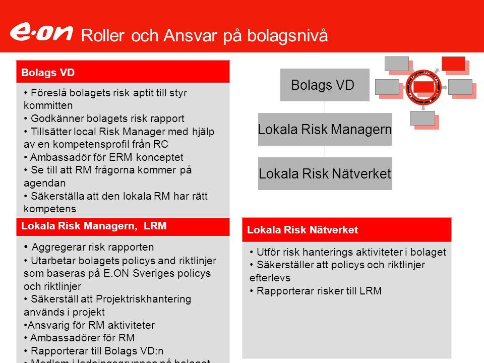 Roller och Ansvar på bolagsnivå Lokala Risk Nätverket Utför risk hanterings aktiviteter i bolaget Säkerställer att policys och riktlinjer efterlevs Ra
