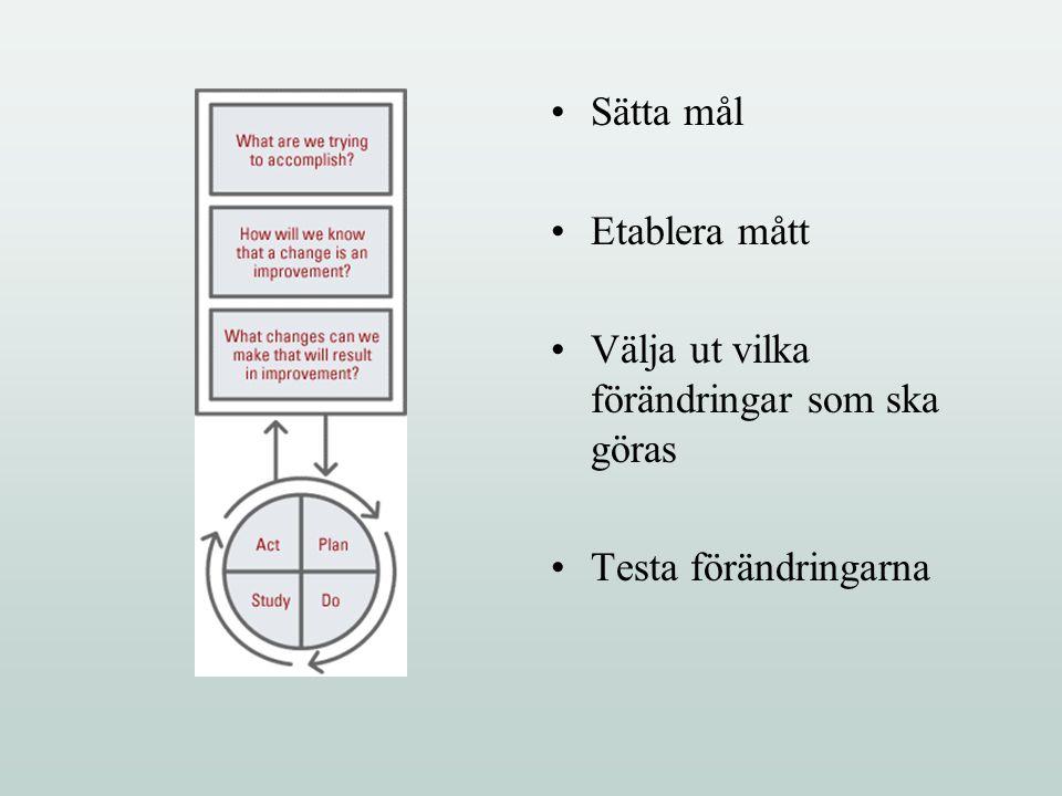 Sätta mål Etablera mått Välja ut vilka förändringar som ska göras Testa förändringarna