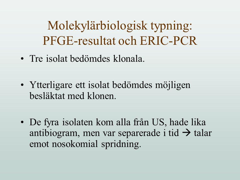 Molekylärbiologisk typning: PFGE-resultat och ERIC-PCR Tre isolat bedömdes klonala.