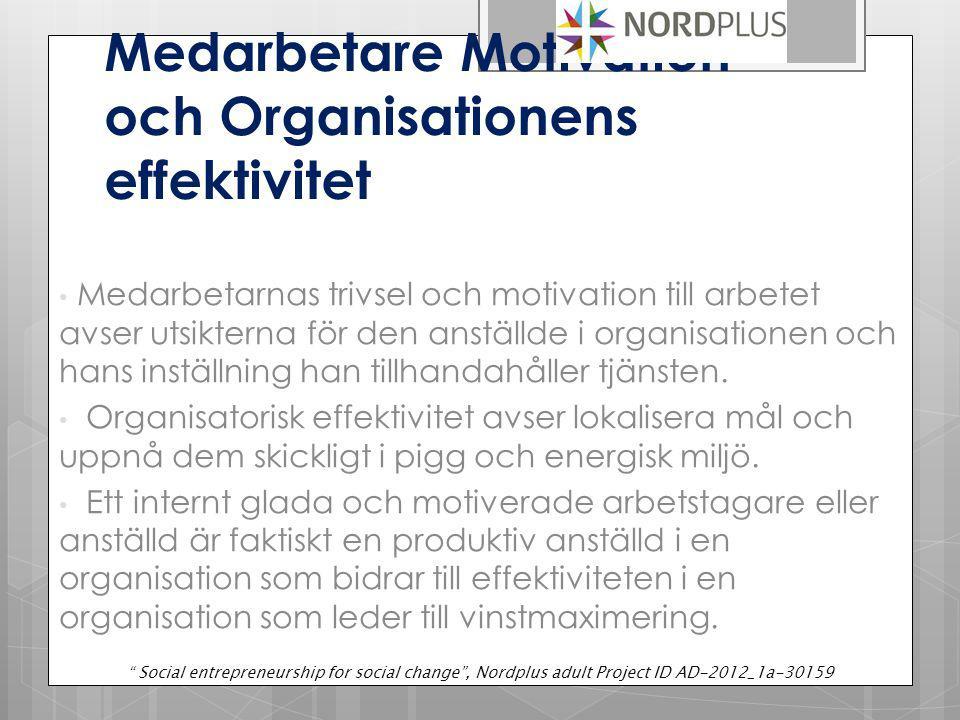 Medarbetare Motivation och Organisationens effektivitet Medarbetarnas trivsel och motivation till arbetet avser utsikterna för den anställde i organisationen och hans inställning han tillhandahåller tjänsten.