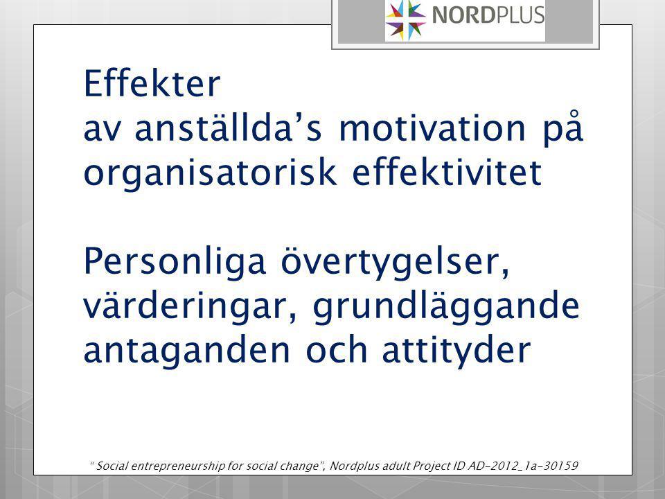 Effekter av anställda's motivation på organisatorisk effektivitet Personliga övertygelser, värderingar, grundläggande antaganden och attityder Social entrepreneurship for social change , Nordplus adult Project ID AD-2012_1a-30159