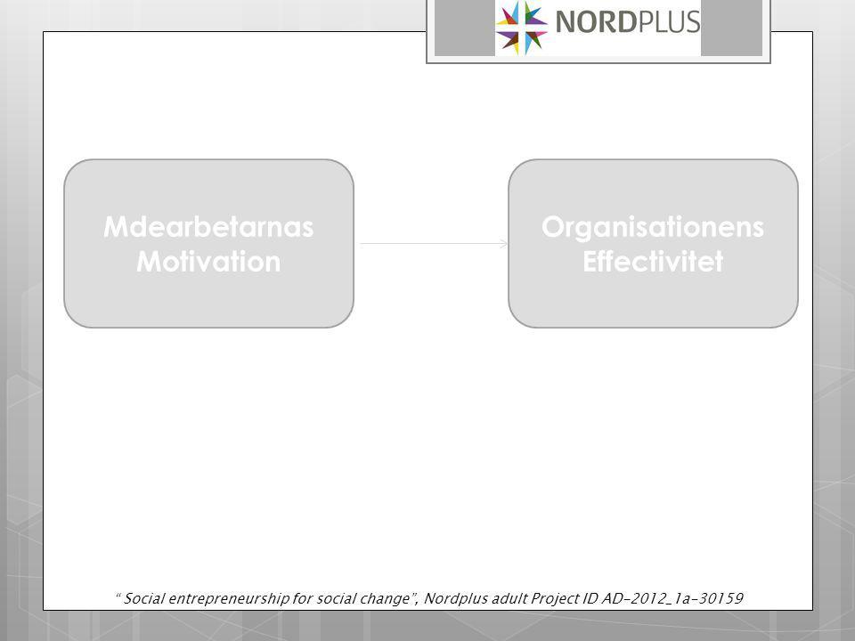 Medarbetare Motivation Erkännande Organisationen s Effectivitet Egenmakt Social entrepreneurship for social change , Nordplus adult Project ID AD-2012_1a-30159