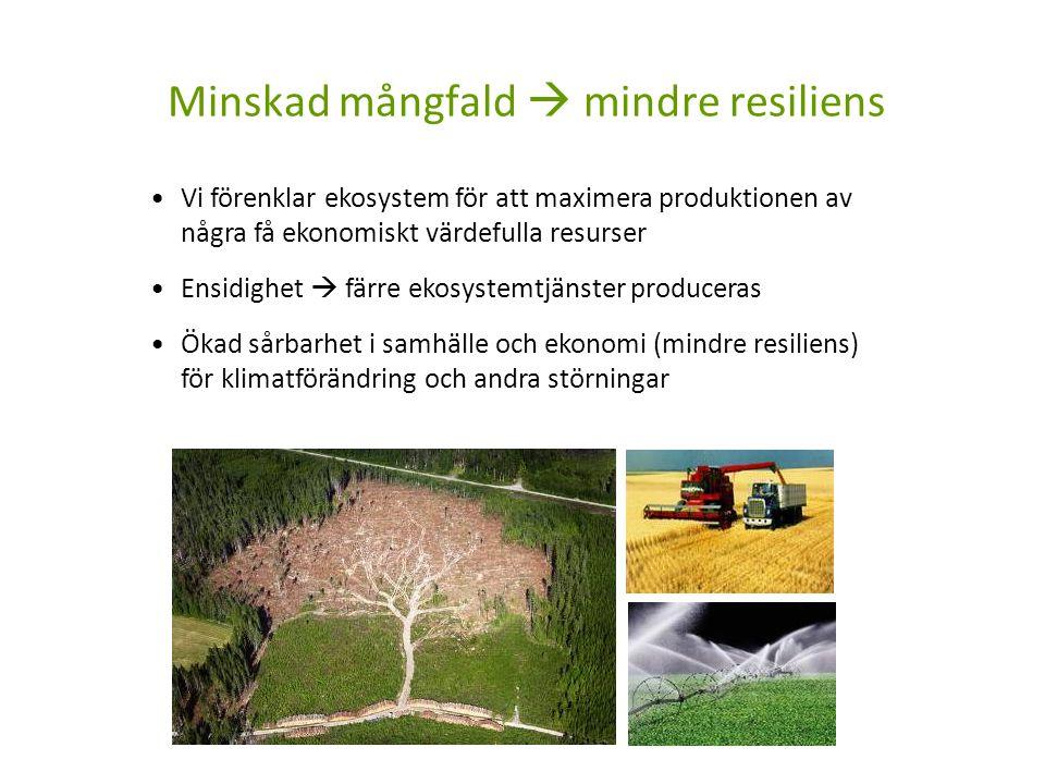 Vi förenklar ekosystem för att maximera produktionen av några få ekonomiskt värdefulla resurser Ensidighet  färre ekosystemtjänster produceras Ökad s