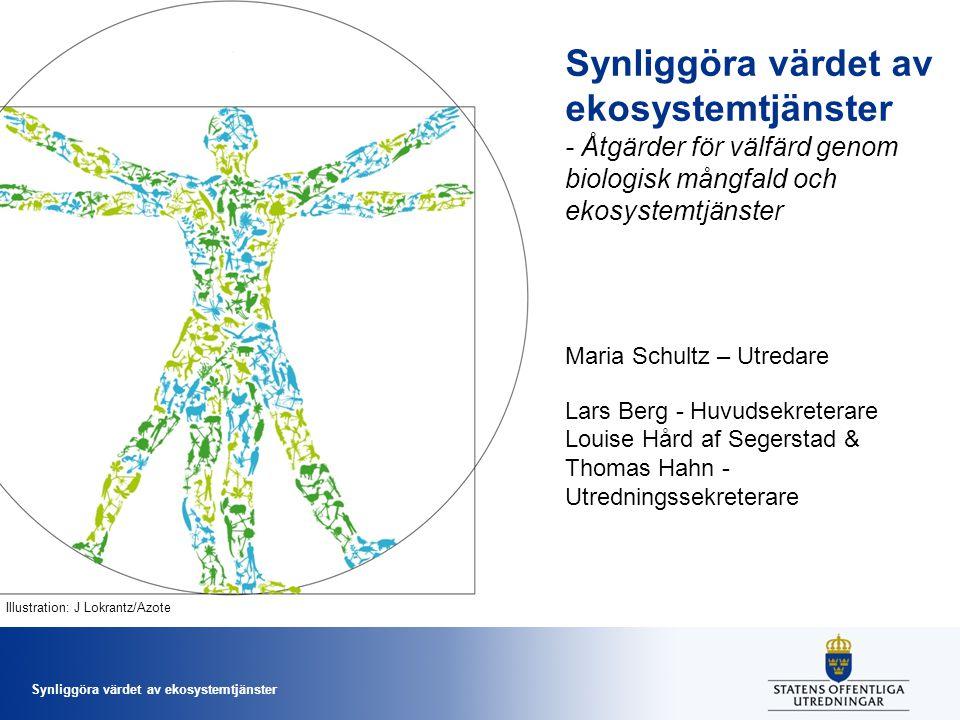 Synliggöra värdet av ekosystemtjänster - Åtgärder för välfärd genom biologisk mångfald och ekosystemtjänster Maria Schultz – Utredare Lars Berg - Huvu