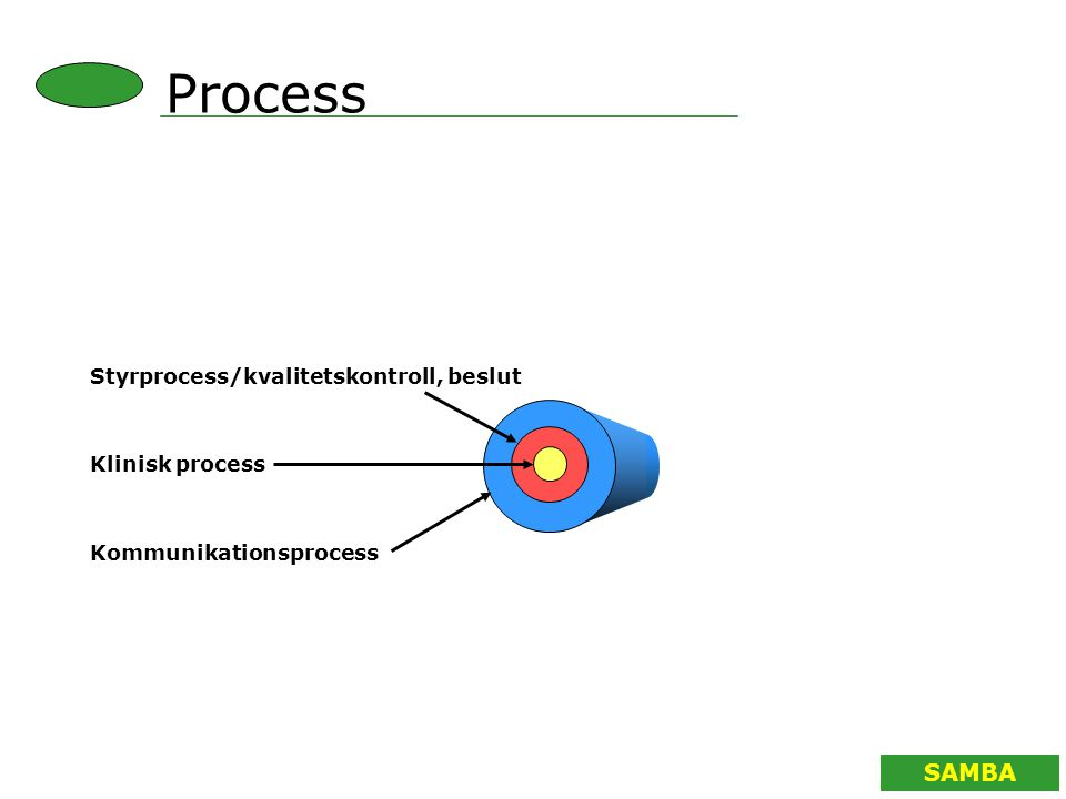 SAMBA Klinisk process Styrprocess/kvalitetskontroll, beslut Kommunikationsprocess Process