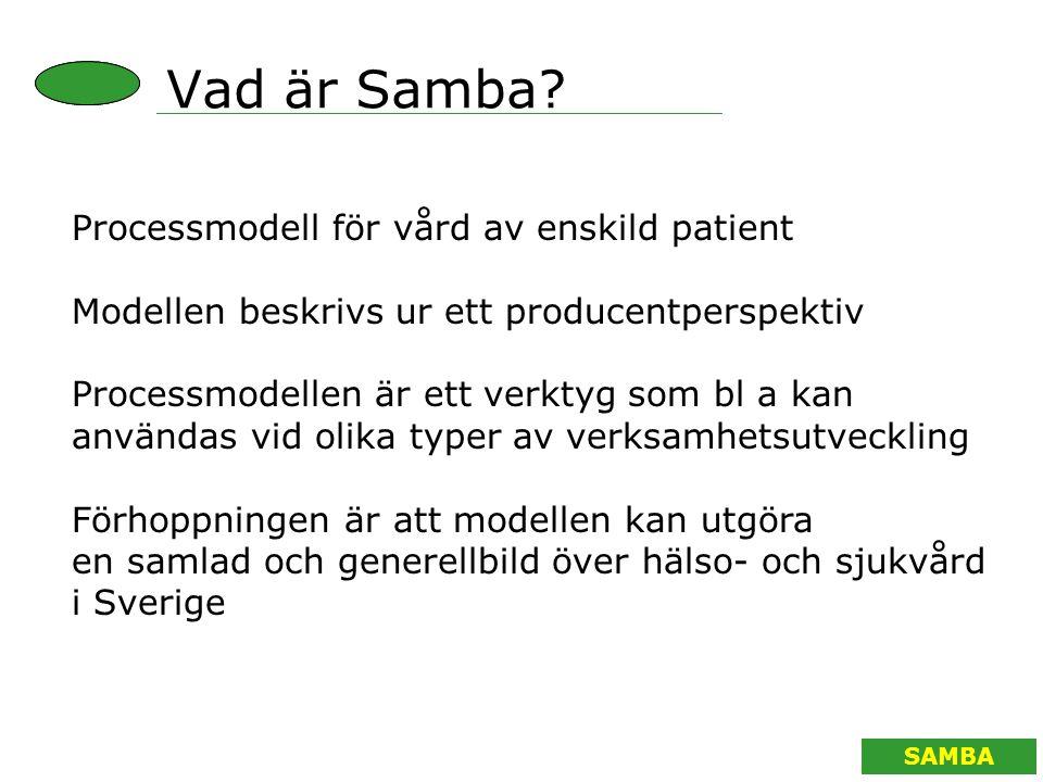 SAMBA Processmodell för vård av enskild patient Modellen beskrivs ur ett producentperspektiv Processmodellen är ett verktyg som bl a kan användas vid
