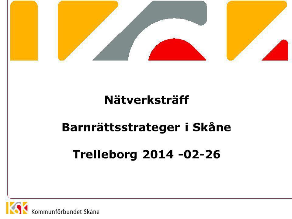 Nätverksträff Barnrättsstrateger i Skåne Trelleborg 2014 -02-26