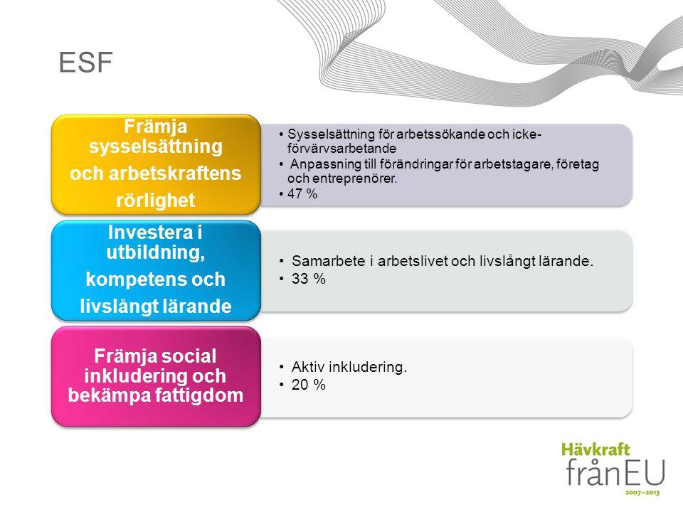 ESF Sysselsättning för arbetssökande och icke- förvärvsarbetande Anpassning till förändringar för arbetstagare, företag och entreprenörer.