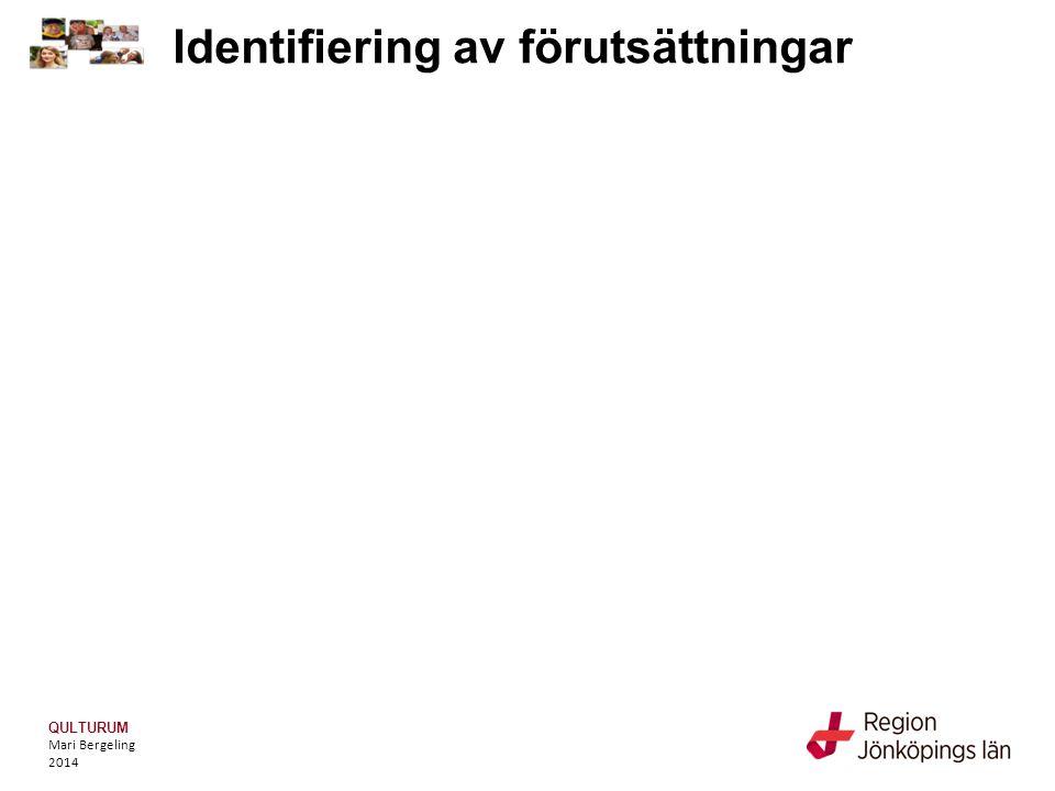 QULTURUM Mari Bergeling 2014 Kartläggning inför beslut om åtgärd