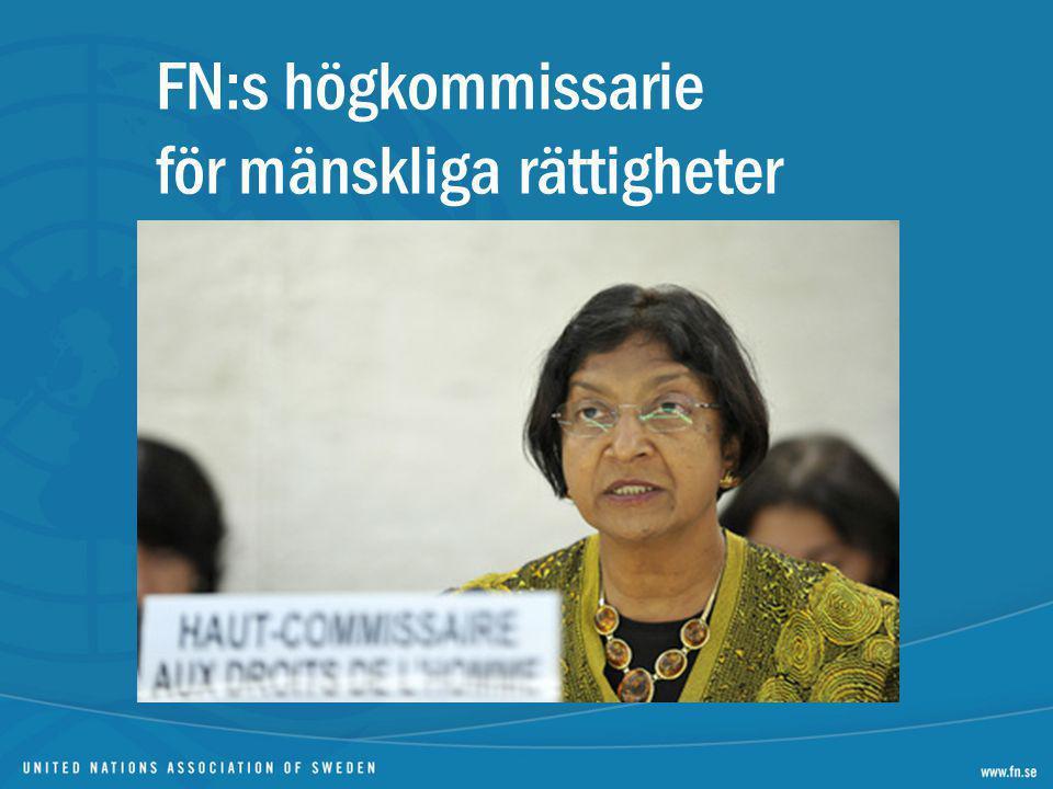 FN:s högkommissarie för mänskliga rättigheter