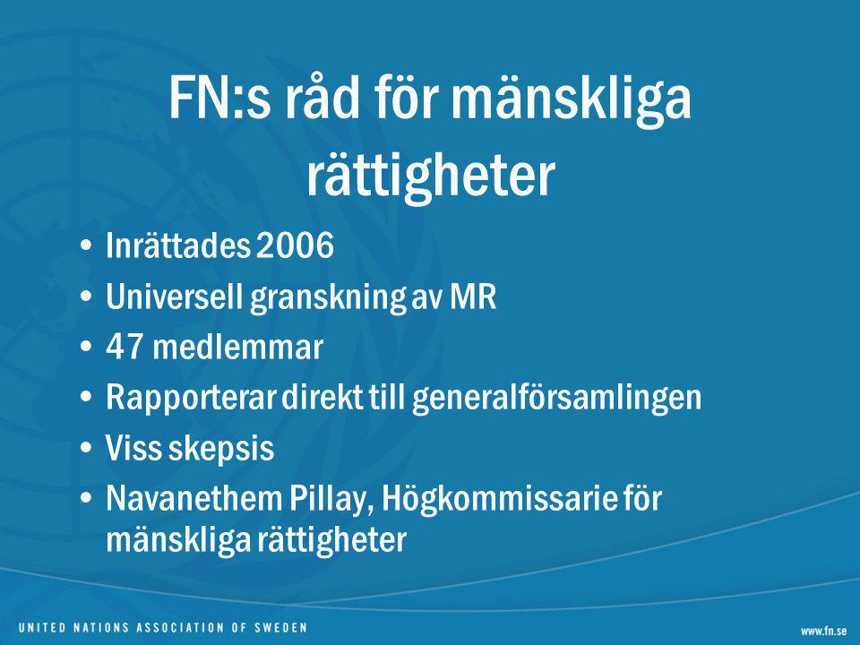 Inrättades 2006 Universell granskning av MR 47 medlemmar Rapporterar direkt till generalförsamlingen Viss skepsis Navanethem Pillay, Högkommissarie fö