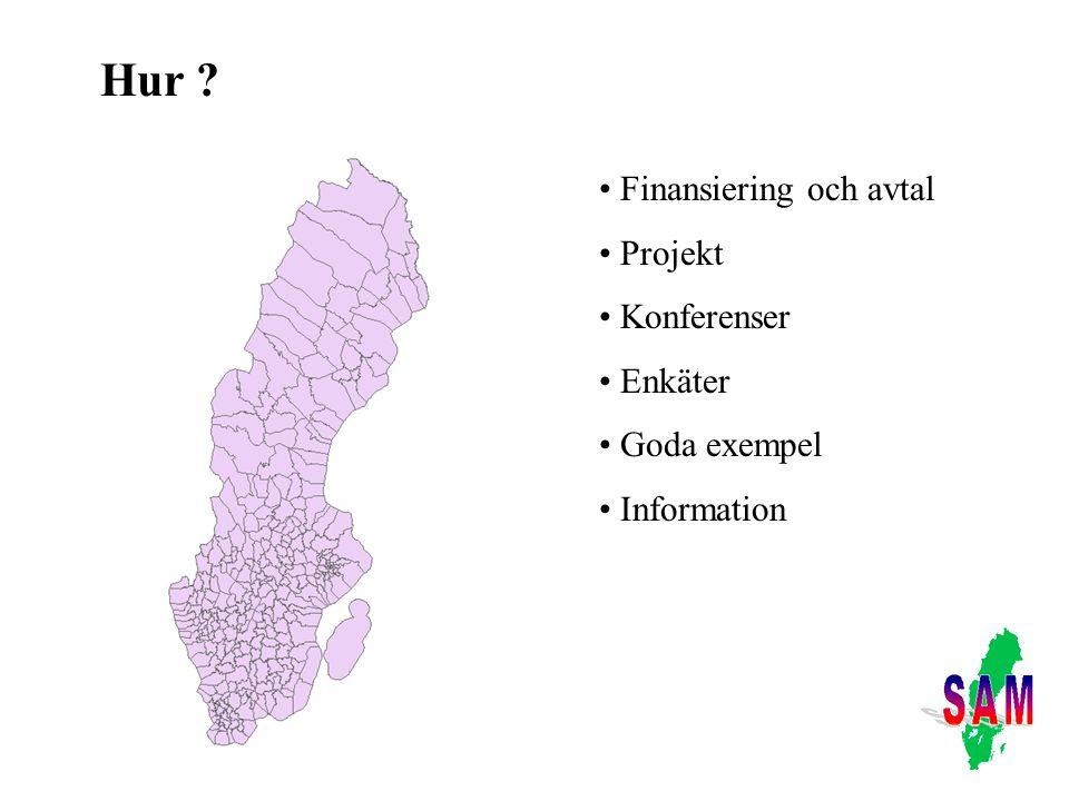 Hur ? Finansiering och avtal Projekt Konferenser Enkäter Goda exempel Information