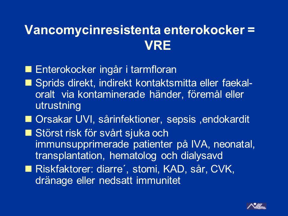 Vancomycinresistenta enterokocker = VRE Enterokocker ingår i tarmfloran Sprids direkt, indirekt kontaktsmitta eller faekal- oralt via kontaminerade händer, föremål eller utrustning Orsakar UVI, sårinfektioner, sepsis,endokardit Störst risk för svårt sjuka och immunsupprimerade patienter på IVA, neonatal, transplantation, hematolog och dialysavd Riskfaktorer: diarre´, stomi, KAD, sår, CVK, dränage eller nedsatt immunitet