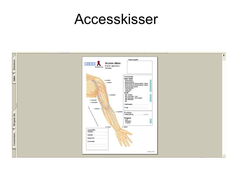 Accesskisser