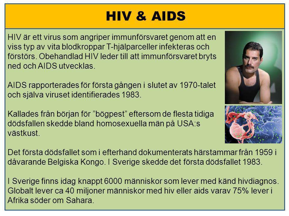 HIV & AIDS HIV är ett virus som angriper immunförsvaret genom att en viss typ av vita blodkroppar T-hjälparceller infekteras och förstörs. Obehandlad